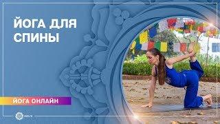 Йога для начинающих. Видео уроки. Хатха-йога. Комплекс для позвоночника и укрепления мышц спины.