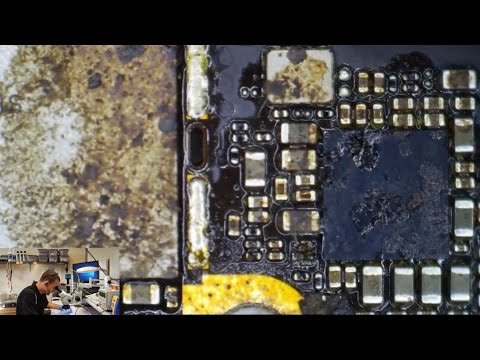 iPhone 6 Data Recovery - C1411 photobombs entire video :D
