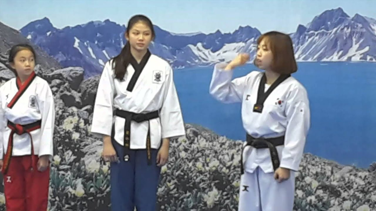 Korea Poomsae Training 2015