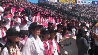2013年8月22日甲子園球場で行われた夏の甲子園第95回選手権記念...