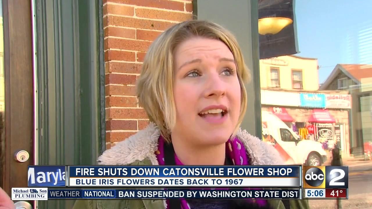 Fire shuts down catonsville flower shop blue iris flowers youtube fire shuts down catonsville flower shop blue iris flowers izmirmasajfo
