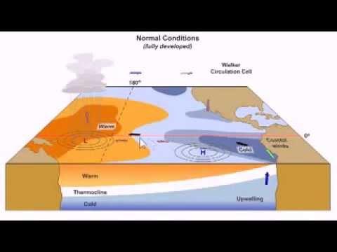 ENSO (El Nino and La Nina)