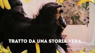 Orango Tango - Idroll (prod. Mr Mee Roy) OFFICIAL VIDEOCLIP