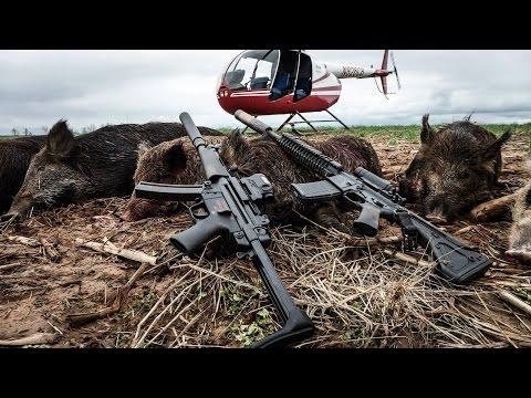 Pork Choppers Aviation - 468 Hog Helicopter Hunt (no music)