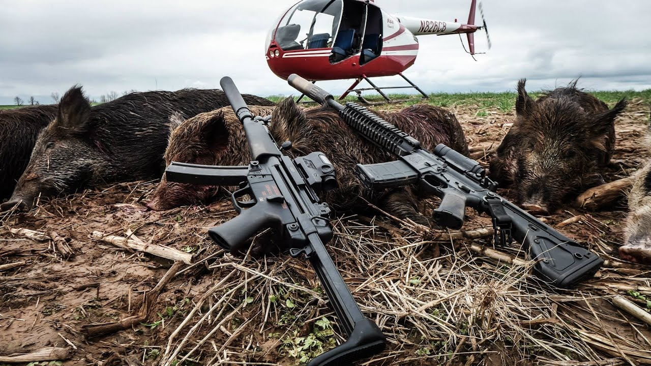 hog hunting from a helicopter in texas with Watch on Watch in addition Helihunts moreover Week Student Gun Tv Aerial Gunnery School Mp15 Prairie Dog Hunt Ar15 Parts Selection moreover 98705028 moreover Hog Apocalypse Texas Has A New Weapon In Its War On Feral Pigs Its Not Pretty.