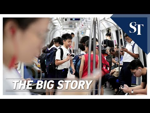 THE BIG STORY: Public transport fare review | The Straits Times