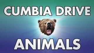 Animals - Cumbia Drive...