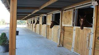 Projet Box Chevaux  - Vidéo Horse Stop