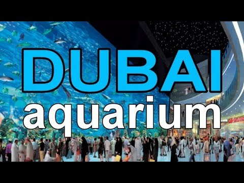Full Coverage Of The Dubai Mall Aquarium In Max Hd 18 Minutes Youtube