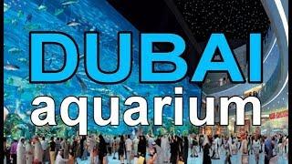 The Dubai Mall Aquarium In Max. Hd 18  Minutes