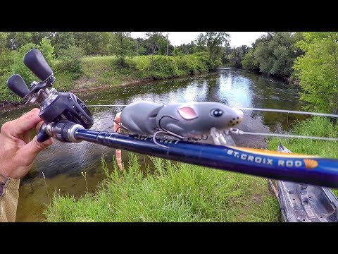 Fishing A Rat Lure For River Smallmouth