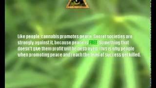 Who Controls The New York City Marijuana Trade?