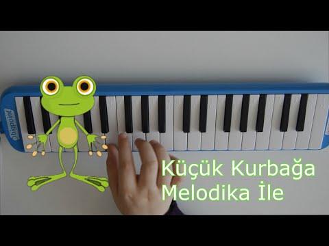 Küçük Kurbağa Melodika