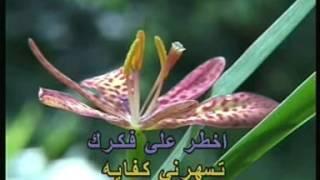 Arabic Karaoke: Abed El Halim Hafez Asmar Ya Asmarani