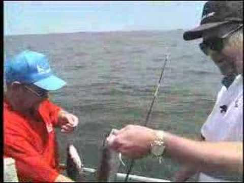 Bottom Fishing Ling On The Fishing Line Rich Johnson