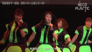 2016年12月24日にて赤坂BLITZにてデビューしたNECO PLASTICの「竜宮城ま...