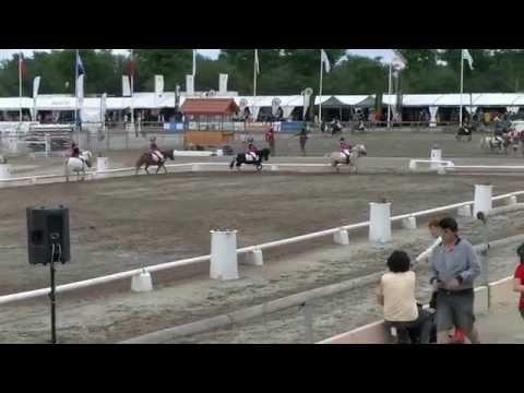 Lamotte-Beuvron 2014 - CCE A1 - Les championnes de France