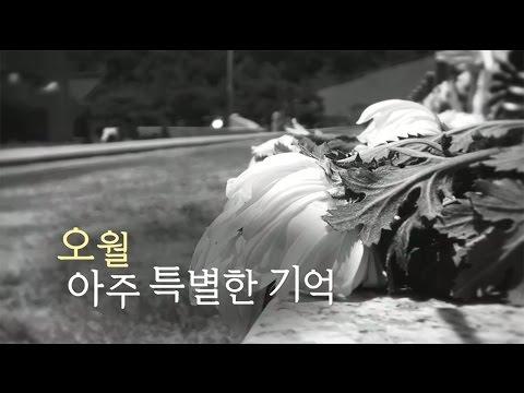 """뉴스타파 목격자들 """"오월 아주 특별한 기억"""""""