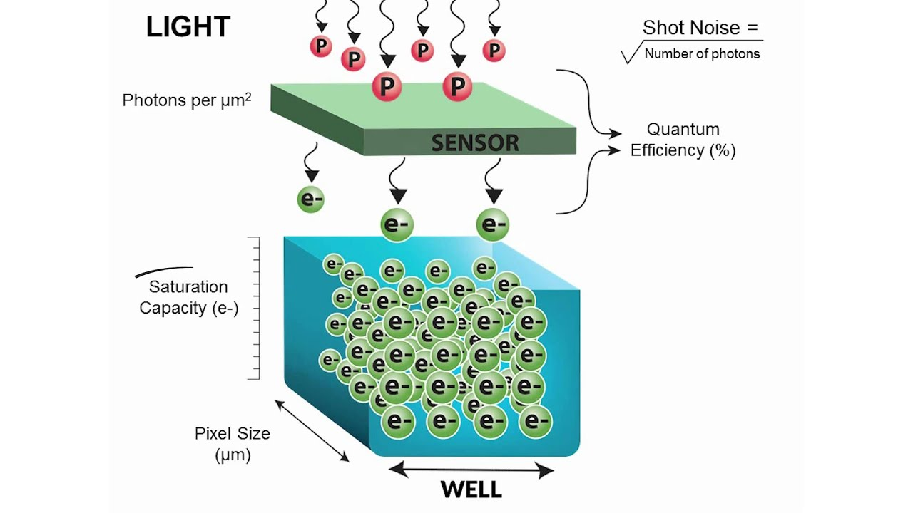 how camera sensors work: quantum efficiency, dark noise, saturation capacity