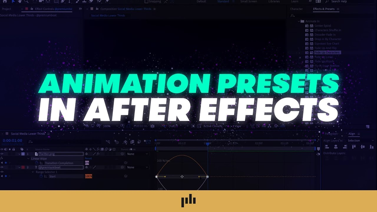 Video Tutorial: Harness the Power of Presets in Adobe After