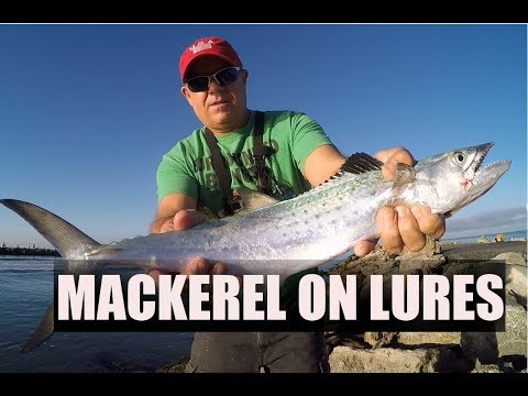 Jetty Fishing For Spanish Mackerel With Lures