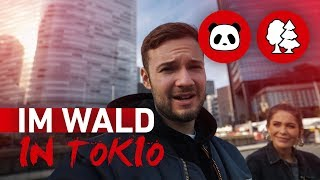 Im Wald in Japan | inscopelifestyle