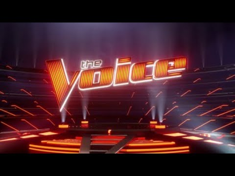 """Voice"" Show"" (1) | Big Apple Academy"