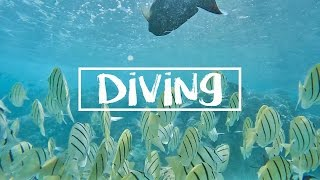 HAWAII: DIVING WITH FISH + LOST MY GOPRO!!
