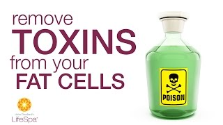 Remove Toxins From Your Fat Cells | John Douillard's LifeSpa