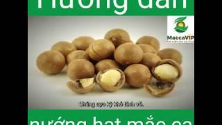 Cách làm món sữa hạt Macca giàu dinh dưỡng