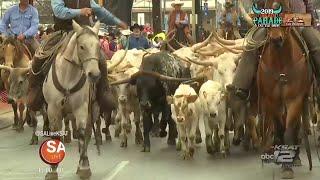 2019 Western Heritage Parade & Cattle Drive | SA Live | KSAT 12