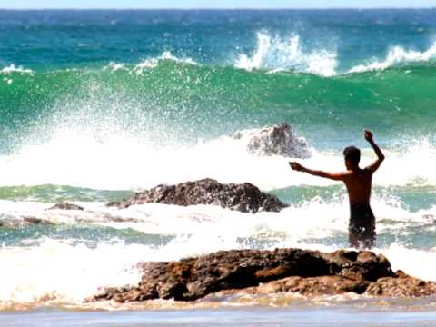 Brazil Life ! Coconut Grove Brazil. Realest International.