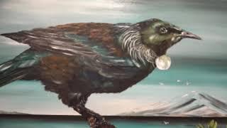 The Dunedin Art Show Highlights Film 2017