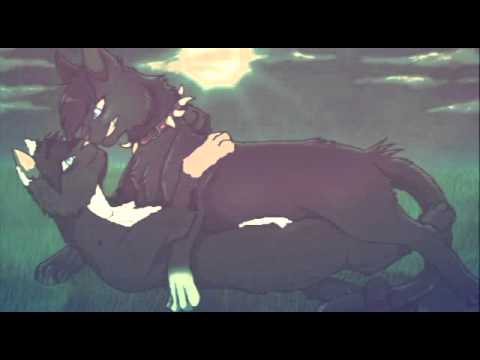 Коты воители бич и лунный коготь