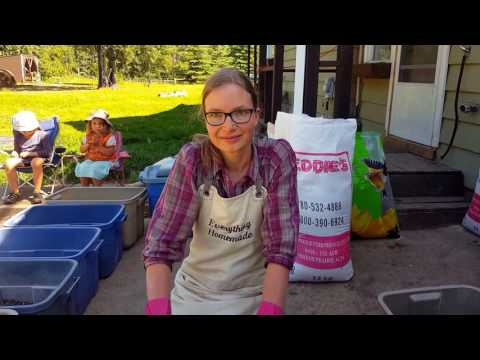 Homemade Poultry, Waterfowl, and Guinea Fowl Feed