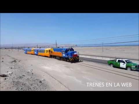 Tren Turístico Arica - Poconchile FCALP