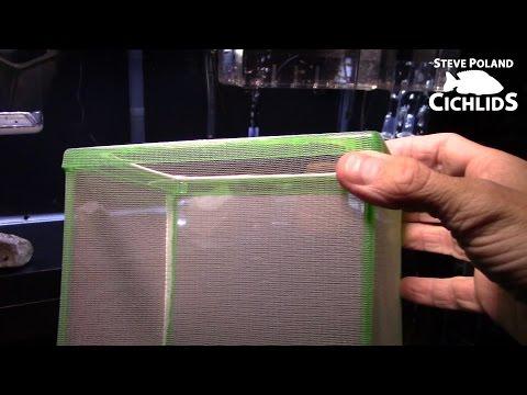 Comparing Fish Breeder Boxes
