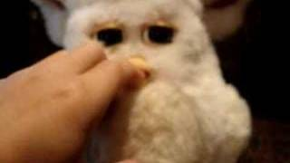 Bipolar Furby