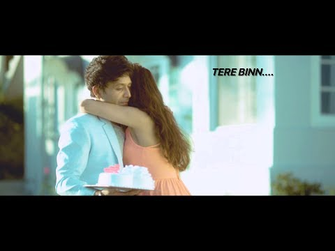 Shael's Tere Binn | Official Music Video | Indipop Songs 2018 | Punjabi Songs 2018 | Shael Official