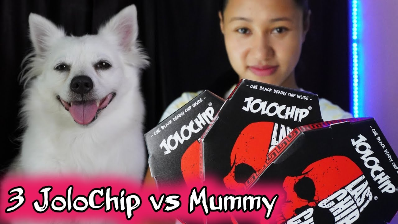 3 JOLOCHIP vs MUMMY | HOTTEST JoloChip Challenge | Talking Dog - Rio and Kulotobaby