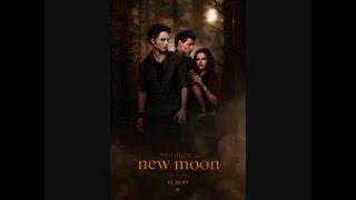 New Moon Soundtrack: #8 Rosyln-Bon Iver & St. Vincent