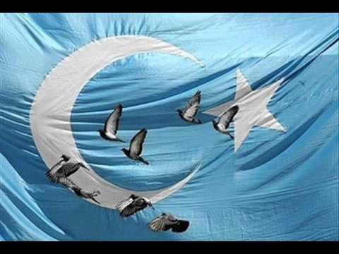 Yawa Kepter(Wild Pigeon) - 1-Uyghurche
