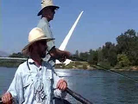 Fly Fishing In Redding, California