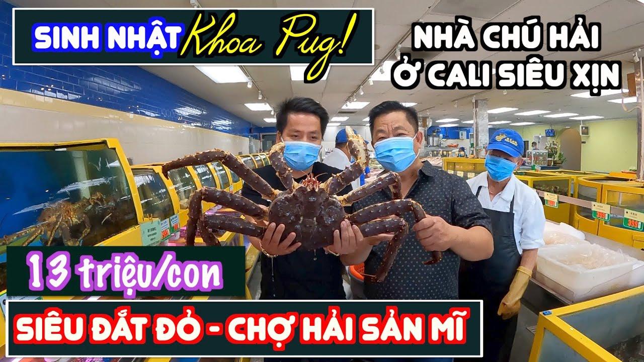 Sinh Nhật Khoa Pug Ở Mỹ! - Đi Chợ Hải Sản Mua Cá Bọ Cạp King Crab Siêu Đắc! - Nhà Chú Hải Quá Đẹp!