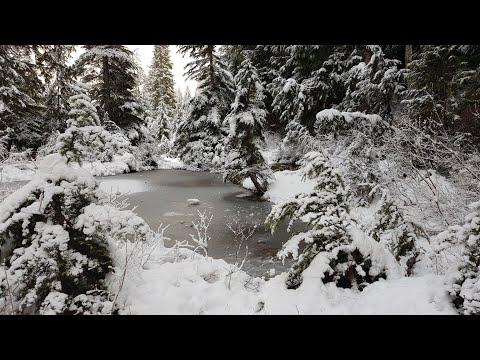 Прогулка по Cypress mountain, открытие зимнего сезона, цены на зимние развлечения