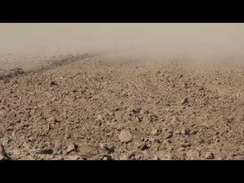 Desert Mourning