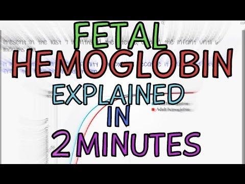 Fetal Hemoglobin - Foetal Haemoglobin - Explained in 2 Minutes!!