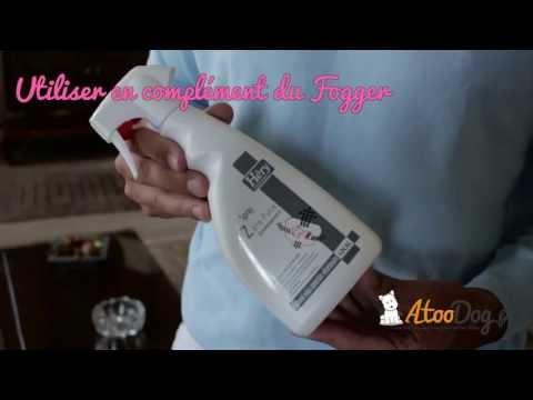 Anti Puce Maison Fogger, élimine Les Tiques Aussi - AtooDog