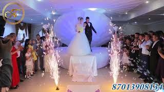 Выход невесты из ракушки