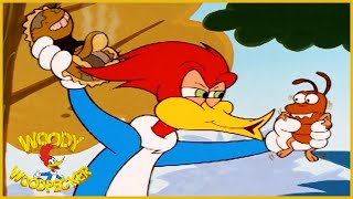 Woody Woodpecker | The Termite | Woody Woodpecker Full Episode | Kids Cartoon | Videos for Kids